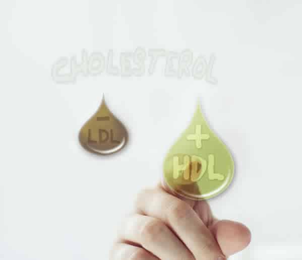 Ayudas para el colesterol