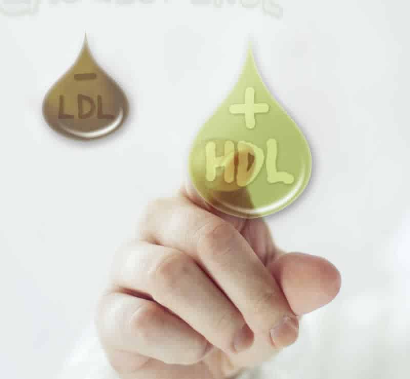 Tratamientos colesterol Farmacia Andorra - Medicina natural - Para-Farmacia Online